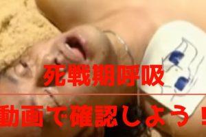 死戦期呼吸の映像