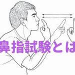 鼻指試験とは