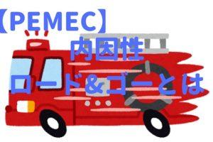 PEMEC内因性ロードアンドゴー