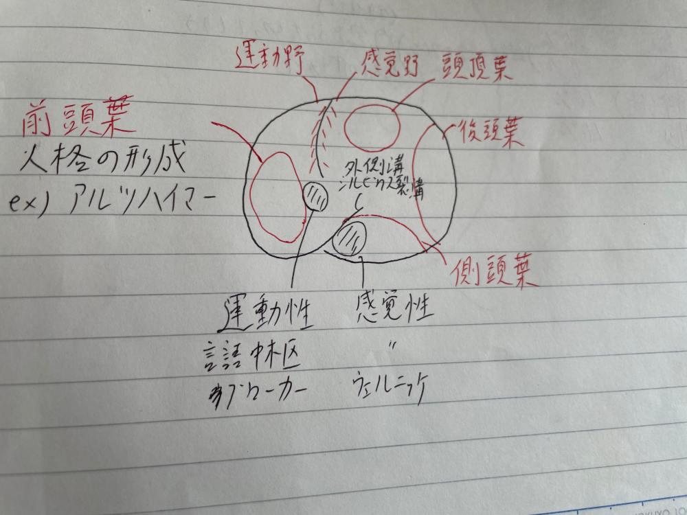 救急救命士国家試験の勉強方法