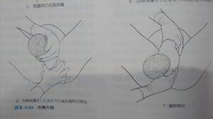 分娩介助3